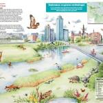 Informatiepaneel Faunapassages gemeente Amsterdam