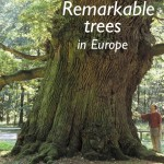 Remarkable trees in Europe, Jeroen Pater