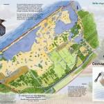 SBB vogelkaart_02
