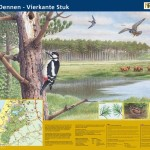 Informatiepaneel_Staatsbosbeheer De Dennen, Texel