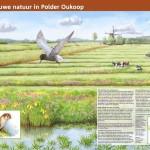 Informatiepaneel Staatsbosbeheer Polder Oukoop