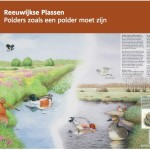 Informatiepaneel Staatsbosbeheer Reeuwijkse Plassen